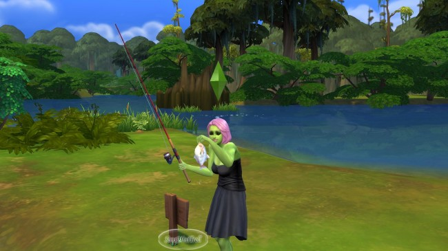 peche a willow creek