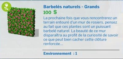 barbelé naturel grand jardin romantique mode construction 5